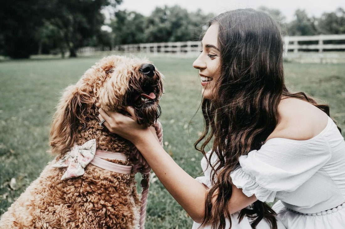 @Daisy_thedood - Golden doodle and dog mom - Pretty Fluffy