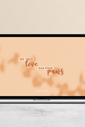 My True Love Has Four Paws - Free Dog Quote Desktop Wallpaper