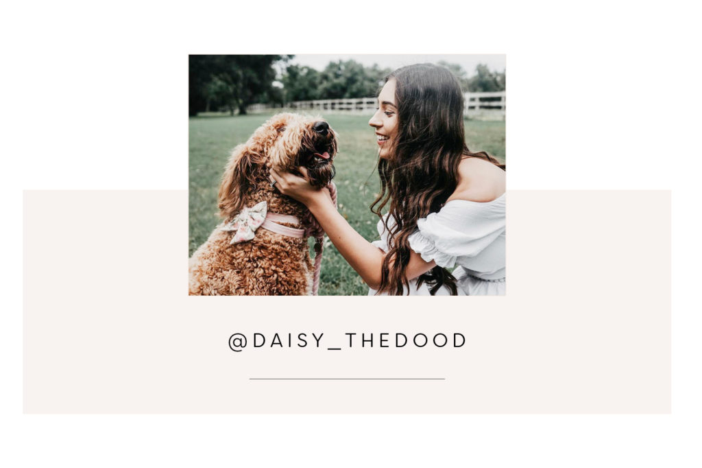 @Daisy_thedood and mum - Pretty Fluffy Most Obsessed Dog Mama Giveaway