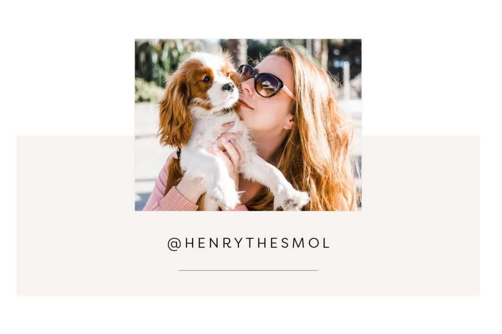 @henrythesmol and mom - Pretty Fluffy Most Obsessed Dog Mama Giveaway