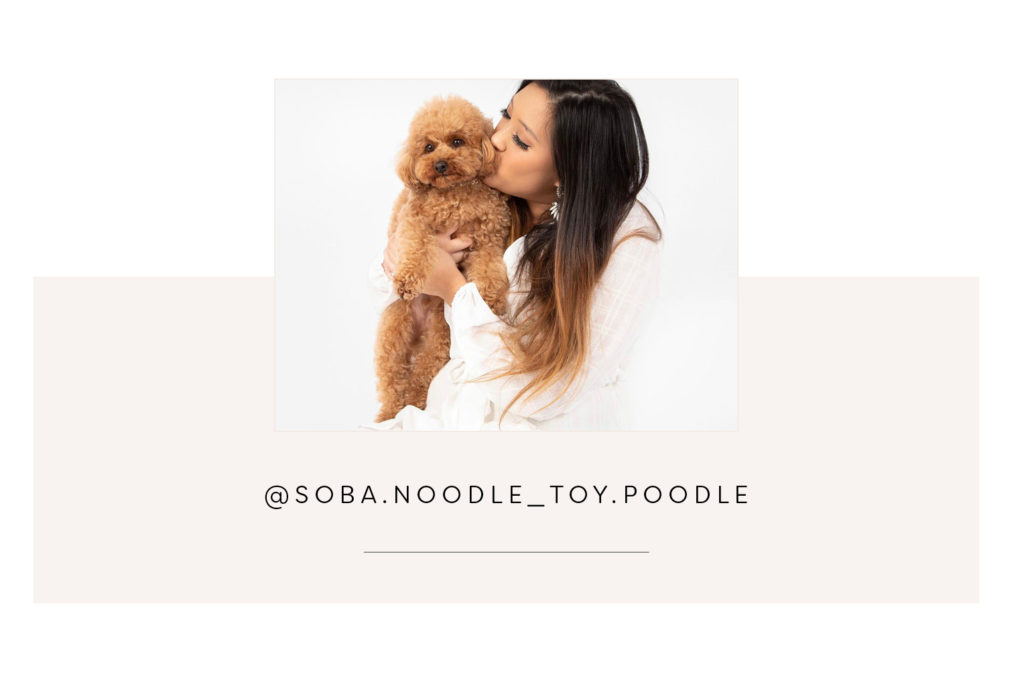 @soba.noodle_toy.poodle and mom - Pretty Fluffy Most Obsessed Dog Mama Giveaway