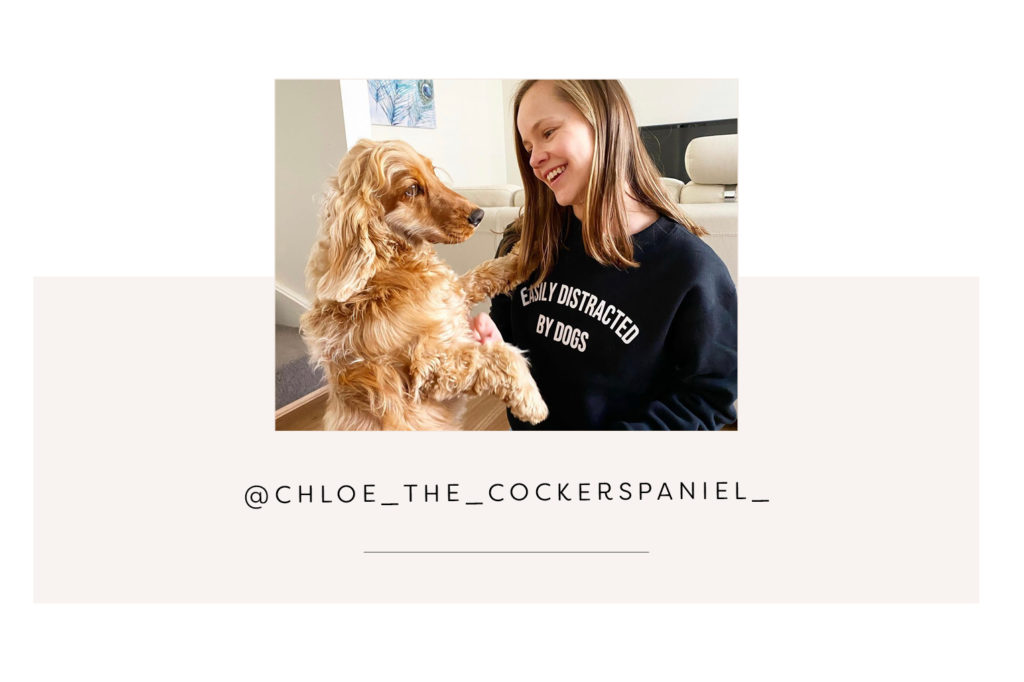 @chloe_the_cockerspaniel_ and mum - Pretty Fluffy Most Obsessed Dog Mama Giveaway