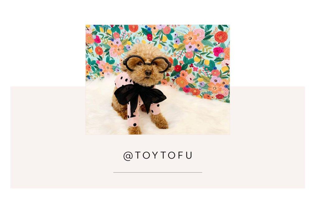 @Toytofu and mum - Pretty Fluffy Most Obsessed Dog Mama Giveaway