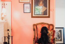 Pink feature wall with vintage paintings and dog - Maison Maffra - Stylish Pet Friendly Accommodation - Pretty Fluffy