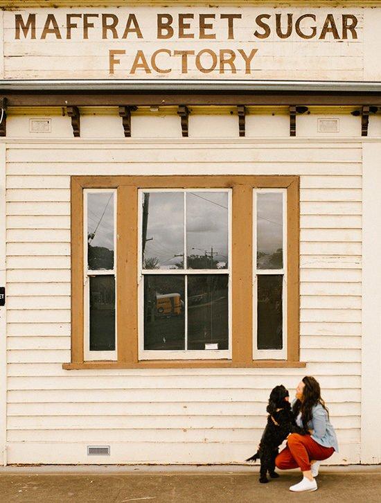 Maffra Beet Sugar Factory - Pet Friendly Travel Maffra - Pretty Fluffy