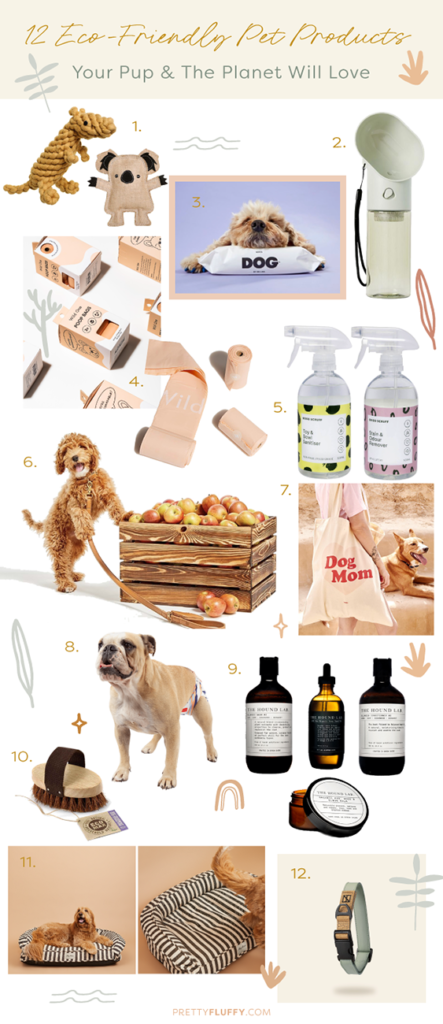 12 Eco-Friendly Pet Products Your Pup & The Planet Will Love